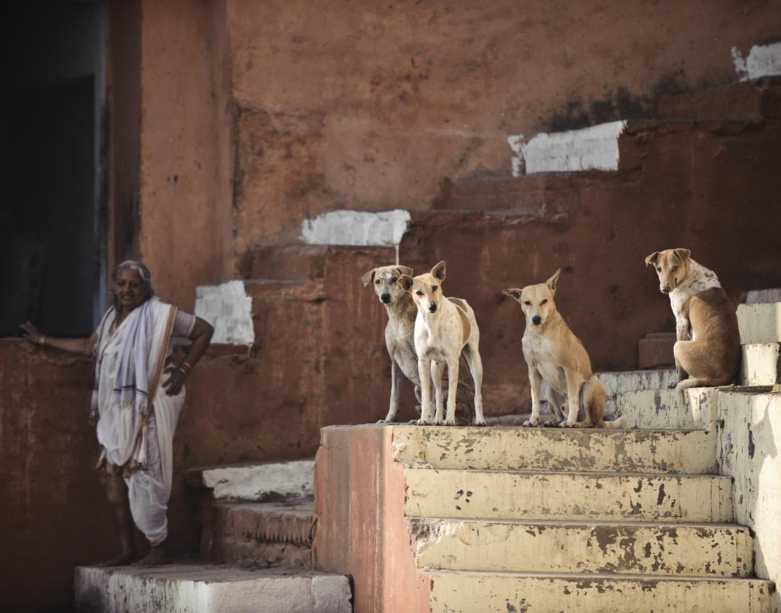 India_Varanasi_ep1_29