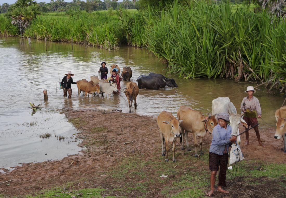 02_satul_cambodgian_ep_I