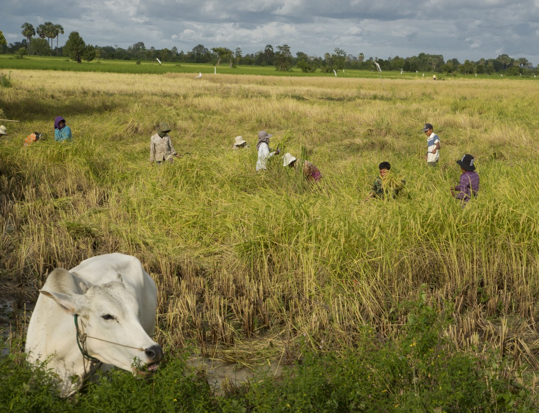 29_satul_cambodgian_ep_I