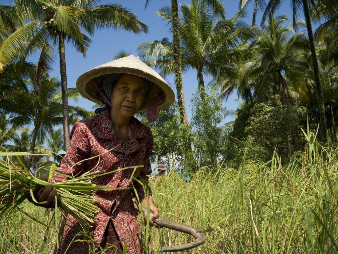 30_satul_cambodgian_ep_I