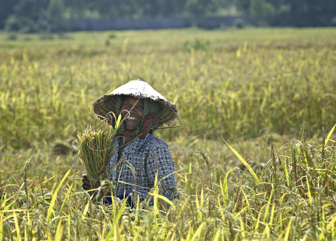 32_satul_cambodgian_ep_I